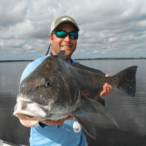 A picture of Tampa Black Drum Fishing with Bag´Em Fishing Charters