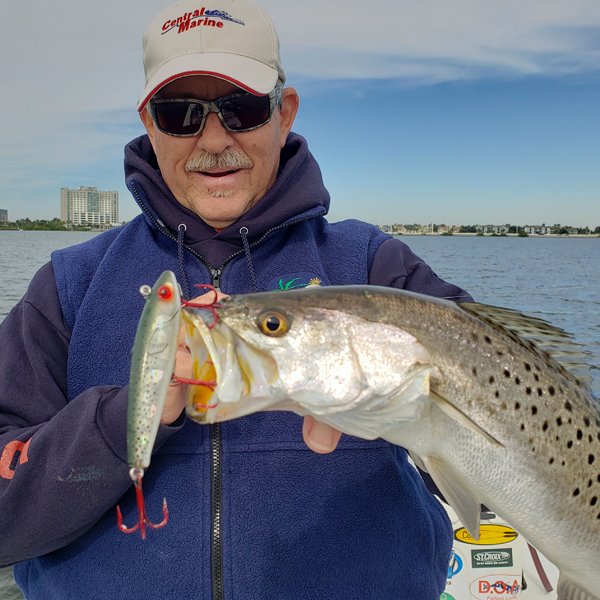 A picture of Tampa Seatrout Fishing with Bag´Em Fishing Charters