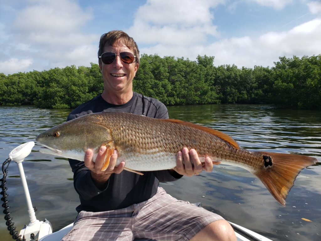 A picture of The Pumpkin Patch: Fishing For Fall Red's In Tampa with Bag´Em Fishing Charters