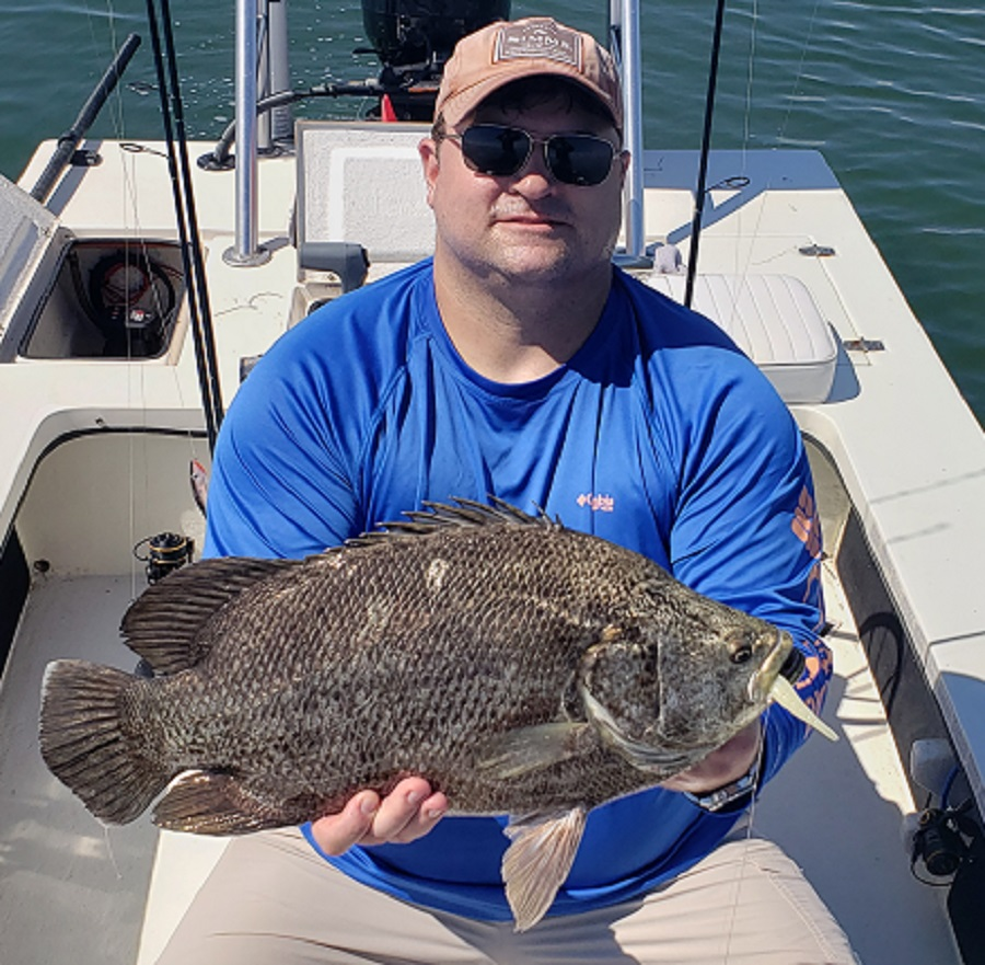 A picture of Popular Tampa Fish Species with Bag´Em Fishing Charters